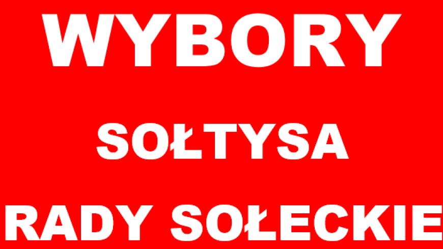 Wybory Sołtysa i Rady Słeckiej